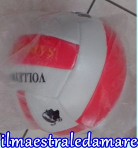 PalloneVolley